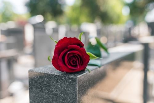 Red rose on top of a tombstone